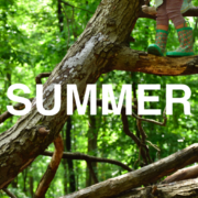 Summer with Forest School For All